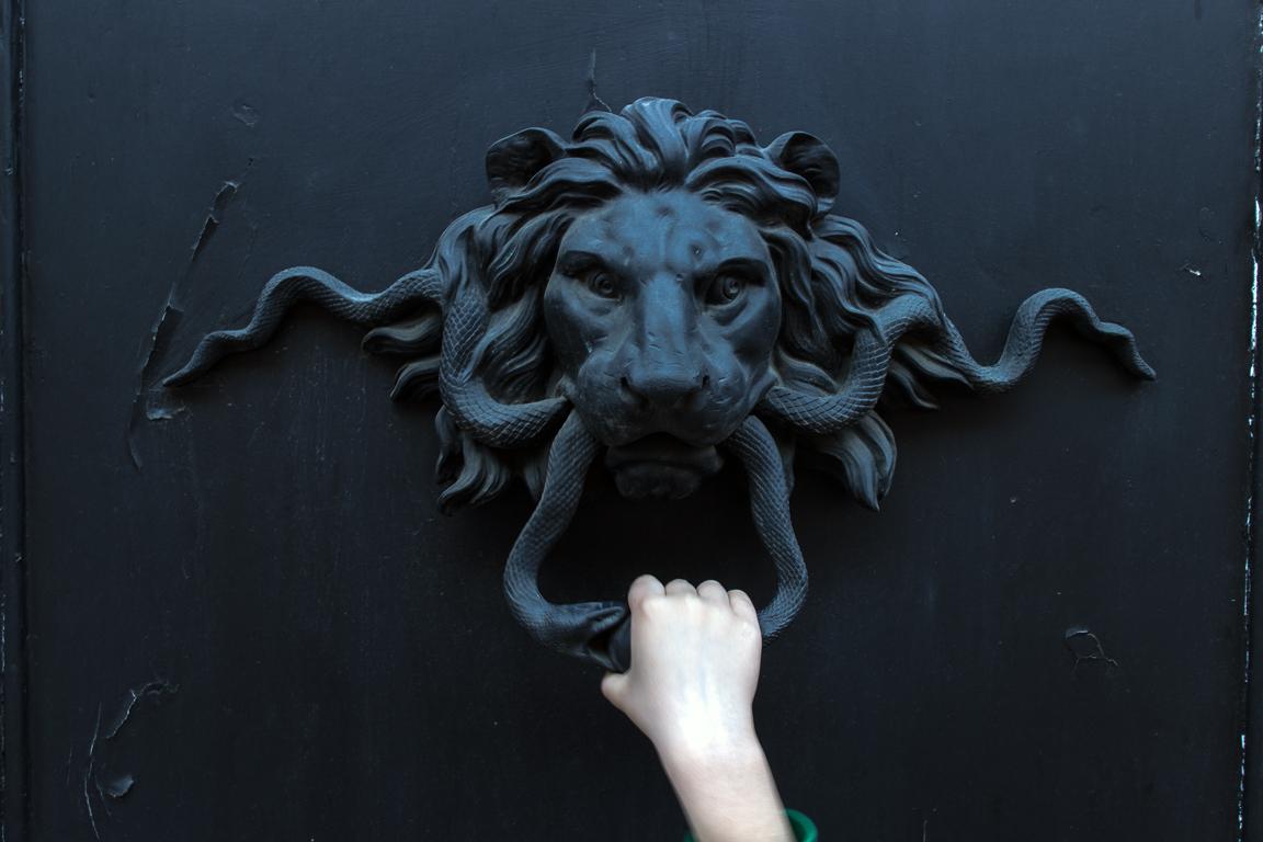 Knocking on lion's door